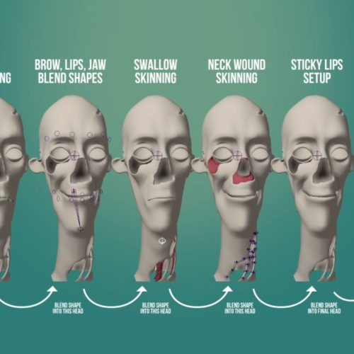 Andy's Facial Blend Shapes