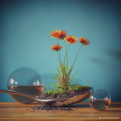 Spoon - Josef Bsharah